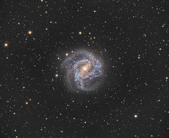 M83 (Southern Pinwheel Galaxy) (photosinferno) Tags: williamoptics zenithstar110t atikone astronomy astroimaging astrogeek astronomik m83 southernpinwheelgalaxy messier galaxy theskyx paramount paramountmyt optec optecpyxisle optectcfsi pixinsight nightsky universe cosmos deepsky astrophotography
