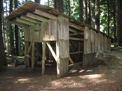 Mackinaw Shelter