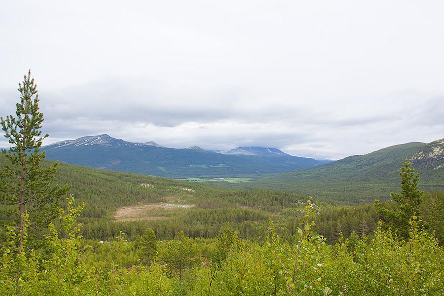 yutunh-view