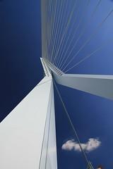 Erasmus brug (Steelwheels) Tags: rotterdam erasmusbrug