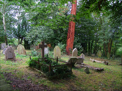 Wilmington churchyard