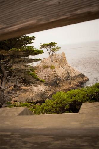 Monterey Sept 2010 124