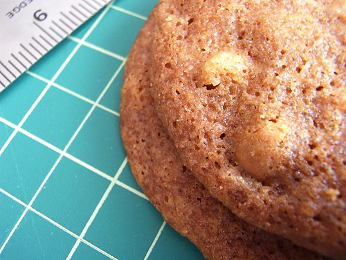 09-08 macadamia nut cookie