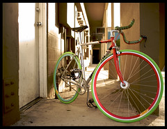 bianchi  125 (crosscolin) Tags: hawaii steel deep gear v fixed miche velocity campy bianchi campione campagnolo arguyle