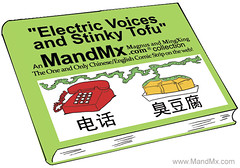 Electric Voices and Stinky Tofu