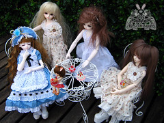 igf601 (96u3gi) Tags: boy girl lady youth dark kid doll ns dreaming bee warriors bjd cupid luts delf limited fairyland ran fee fob celeste ws bory in aru kdf celio mirei peakwood pukipuki berylyn