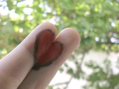 This is love. (marina lins) Tags: love heart dedos coração