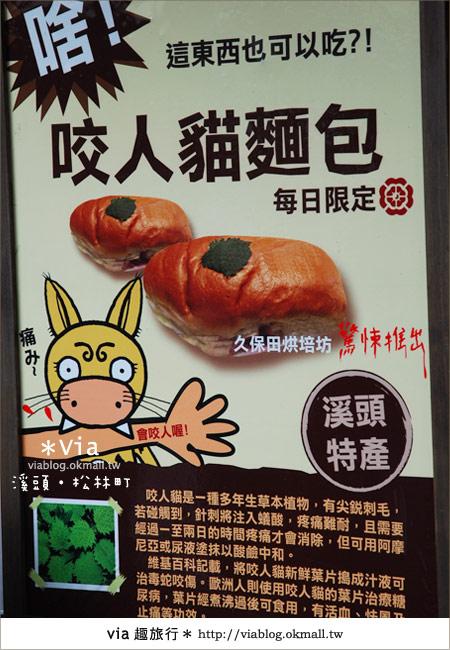 【南投】台灣,妖怪出沒?!來溪頭妖怪村-松林町抓妖吧!35