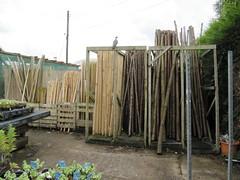 Tree stakes will go nearer the trees (wallygrom) Tags: england westsussex pigeon angmering treestakes manornursery manornurseries