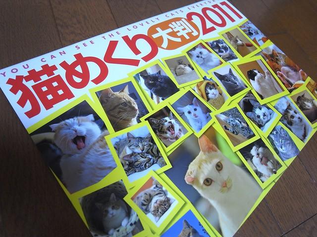 猫めくり大判2011