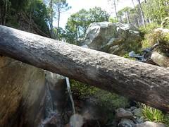Entre la confluence Calva et le Castellucciu : vues diverses de la montée avec les arbres en travers