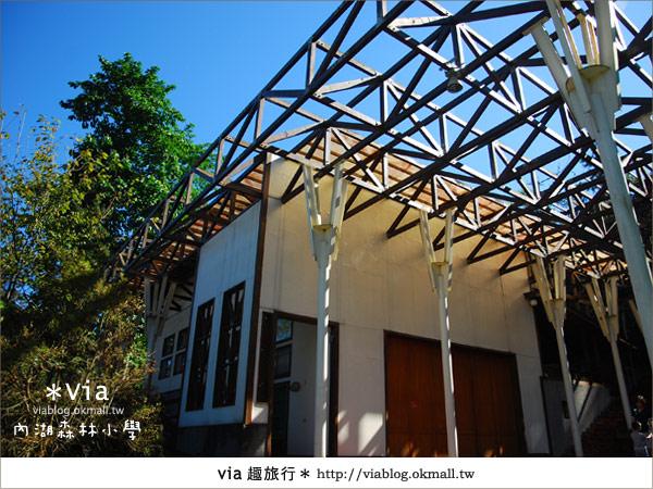 【溪頭一日遊】森林中的夢幻校園~內湖森林小學37