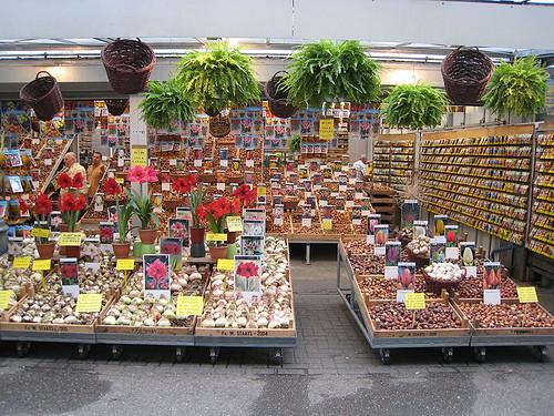 Amsterdam - Flower Market