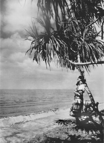 Young woman and coconut trees