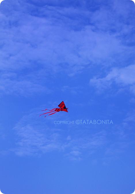Flying Kite on Parangtritis Sky