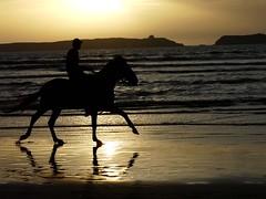 Atardecer en Marruecos (Enrique Flores 71) Tags: sunset sol caballo atardecer playa morocco marruecos jinete esaouira anawesomeshot colorphotoaward panoramafotogrfico thebestofmimamorsgroups peopleenjoingnature tripleniceshot mygearandmepremium mygearandmebronze mygearandmesilver mygearandmegold mygearandmeplatinum dblringexcellence