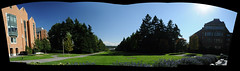 Great weather (daniellih) Tags: seattle blue sky panorama sun building tree green uw window grass architecture campus washington nikon university view pano wide sunny structure clear splash grassland range universityofwashington   d90  daniellih