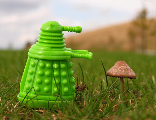 eco-dalek approves of natural recycler