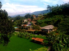 Amazing View (Atéf AlShehri) Tags: indonesia day cloudy 3g iphone puncak atef iatef alshehri