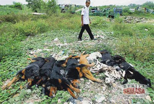5030108947 48d9ccee28 Kes Pembunuhan Dato Sosilawati Lawiya (AKHIR)
