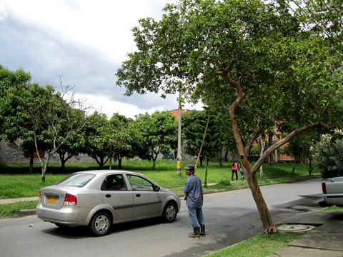 """En los intermedios, dejar pasar los vehículos. Mientras A-Pin estuvo con don Albeiro pasaron seis carros y una moto. """"Normalmente, esta calle no es muy transitada pero vea hoy están pasando cada rato"""", contó."""