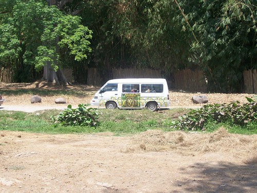 Safari Van