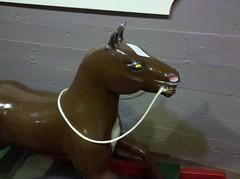 A Weird, Tiny, Angry Little Horse