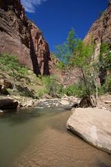 Virgin River Canyon 01