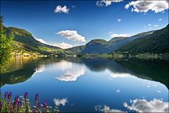 sogndal (heavenuphere) Tags: sogndal norway sognefjord sognefjorden fjord water reflection landscape 1750mm gi 11
