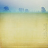 life in pastel (Ąиđч) Tags: trees sky texture andy fog alberi photoshop painting landscape earth andrea pastel andrew cielo terra nebbia paesaggio iphone dipinto benedetti pastello casinalbo vertorama ąиđч