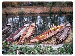 Stocherkhne am Neckar (einfachschn) Tags: color fall digital river germany herbst fluss altstadt tuebingen neckar tbingen stocherkahn badenwrtemberg flus neckarinsel