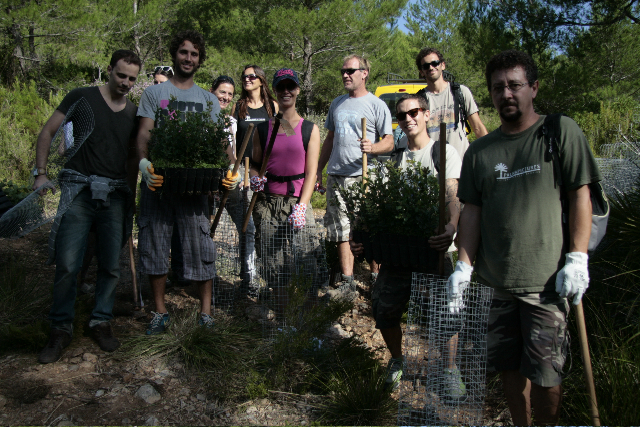 Palma Pictures plants 350 trees in Mallorca by 350org