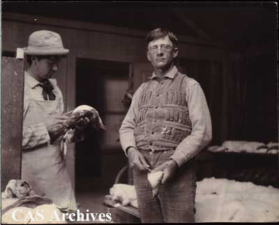 """Mr. Loomis and A.L. Bolton in workshop of California Academy of Sciences Expedition, Monterey, California. June 1897."""