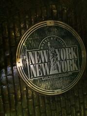 이곳은 뉴욕!(뉴욕)