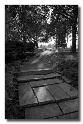 Ingnatius Centre - The Steps