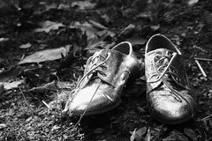 +++++++ (peyton weikert) Tags: light bw fall leaves outside gold shoes shadows shine laces frass
