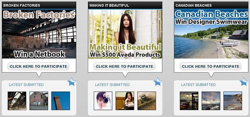 Lenzr's photo contests for ERP software, designer swimwear, and a  beauty school