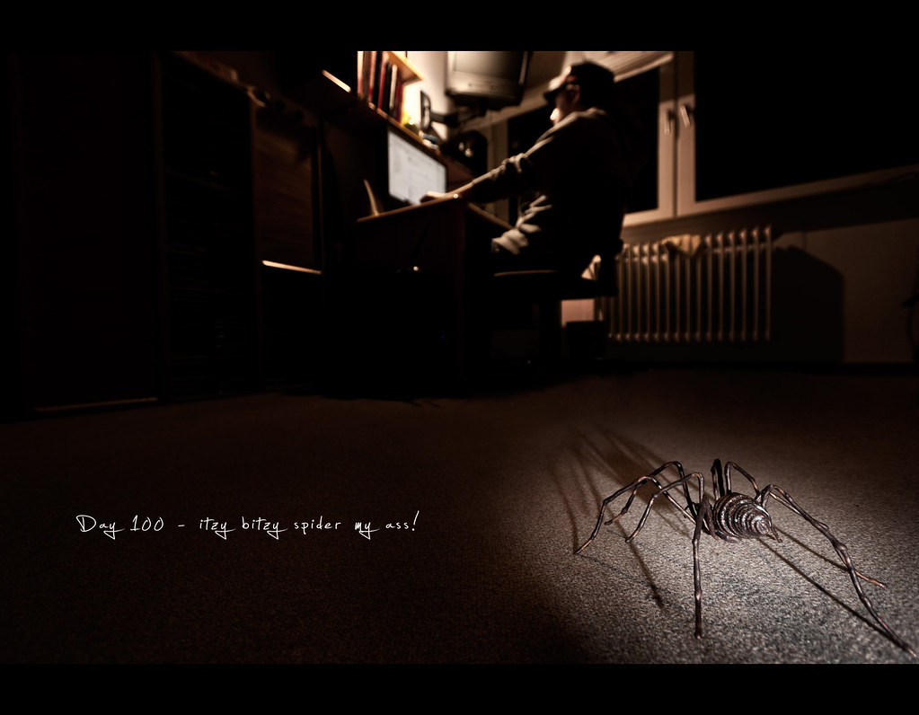 Day 100, 100/365, Project 365, Strobist, bokeh, Self Portrait, wide angle, spider, itzy bitzy spider, scary, creepy, unexpected, surprise, ourdailychallenge