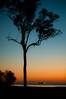 Moreton Sunset (lakesly) Tags: sunset night outdoor australia imagespace:hasdirection=false