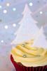 Christmas cupcake 0348 R