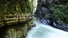 Vintgar, Slovenia (Malvinaphoto) Tags: travel path slovenia flowing balkans gorges vintgar riverwater