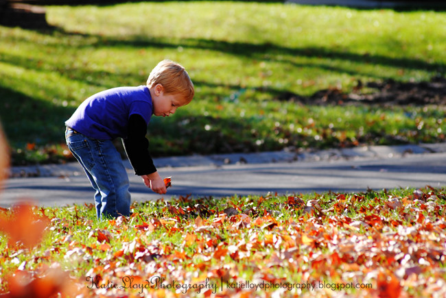 Breck-collecting-leaves-2