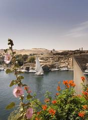 Aswan (Michaeljohn) Tags: egypt aswan
