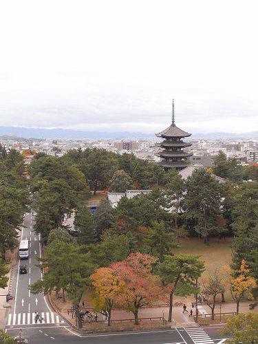 奈良県庁屋上展望台-10