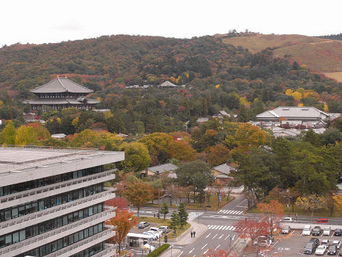奈良市街の紅葉を一望できる『奈良県庁屋上展望台』