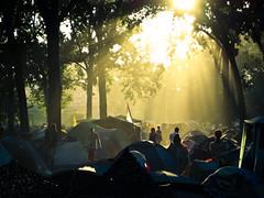 Serbian sunset (Aged Joe Barker) Tags: camping trees sunset silhouette festival evening dusk serbia lensflare sunbeam atmospheric sunstreaks exitfestival