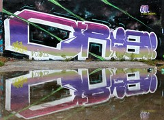 GRIS (The Mouarf) Tags: reflection gris graffiti king rules reflet dmv mouarf themouarf