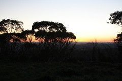 "Dawn view from Mt Ginini • <a style=""font-size:0.8em;"" href=""http://www.flickr.com/photos/10945956@N02/5202205974/"" target=""_blank"">View on Flickr</a>"