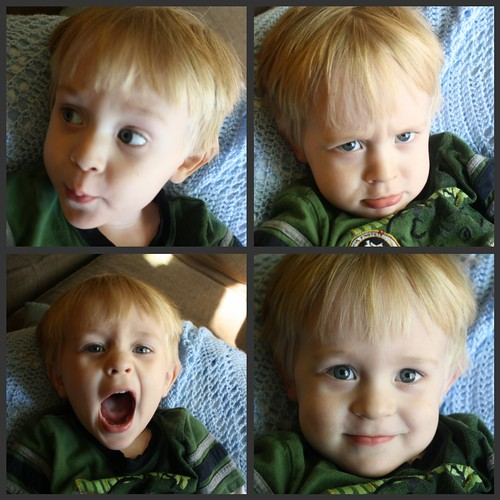 landon faces