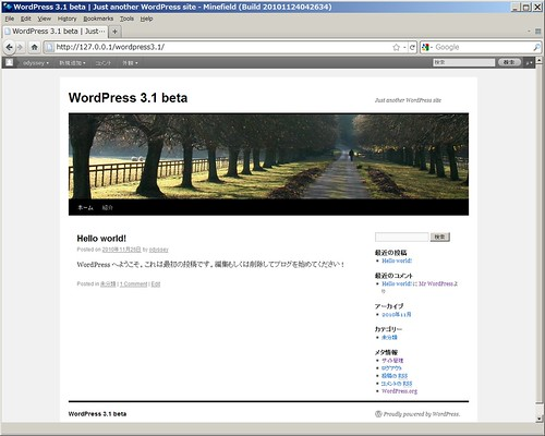 WordPress 3.1 beta index